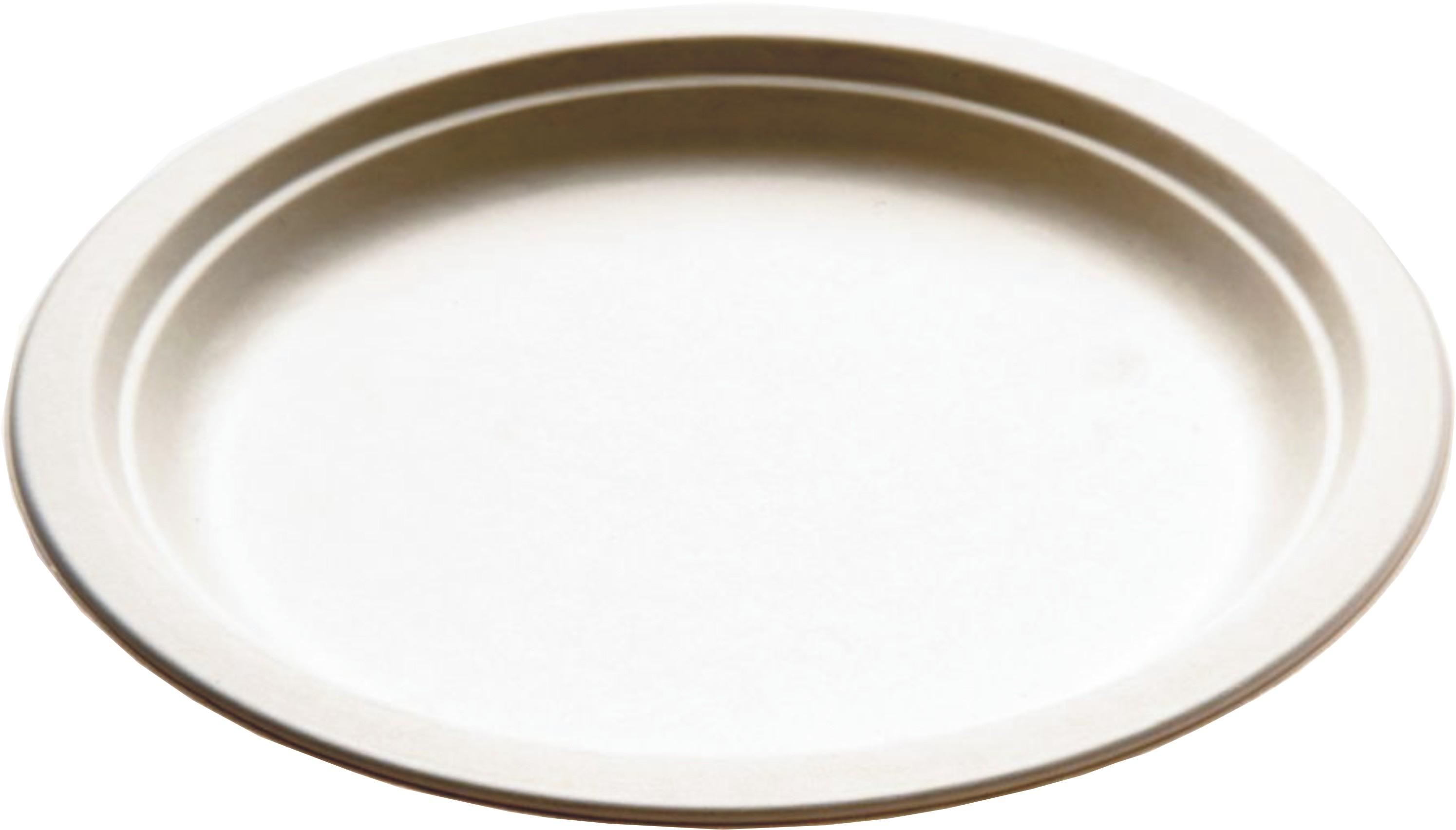 8bb5ea0cef41 Piatto fondo monouso ecologico cm 18 - 680ml per primi, pasta o zuppa